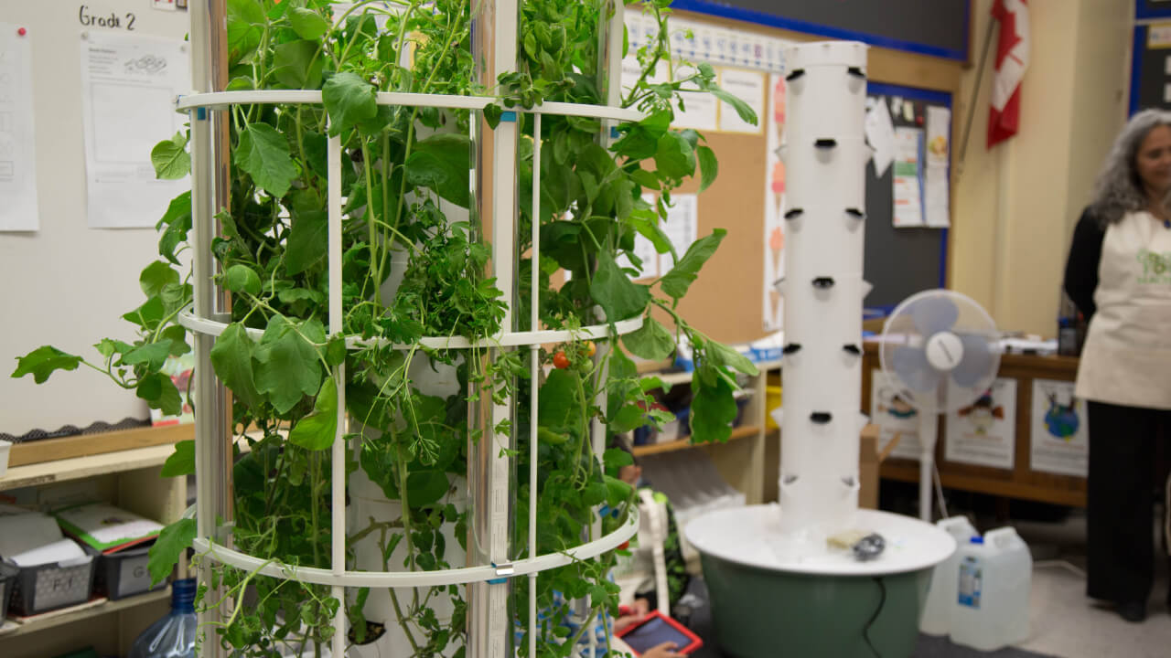 Good Food Machine Tower Garden