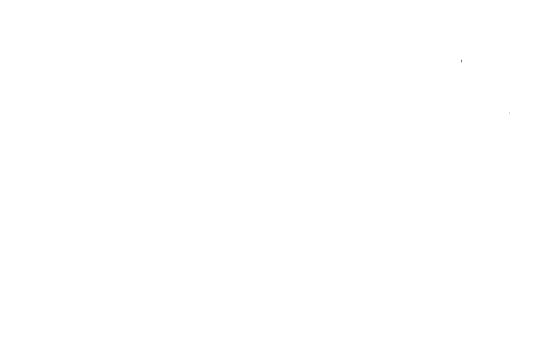 LowesLogo-WHT